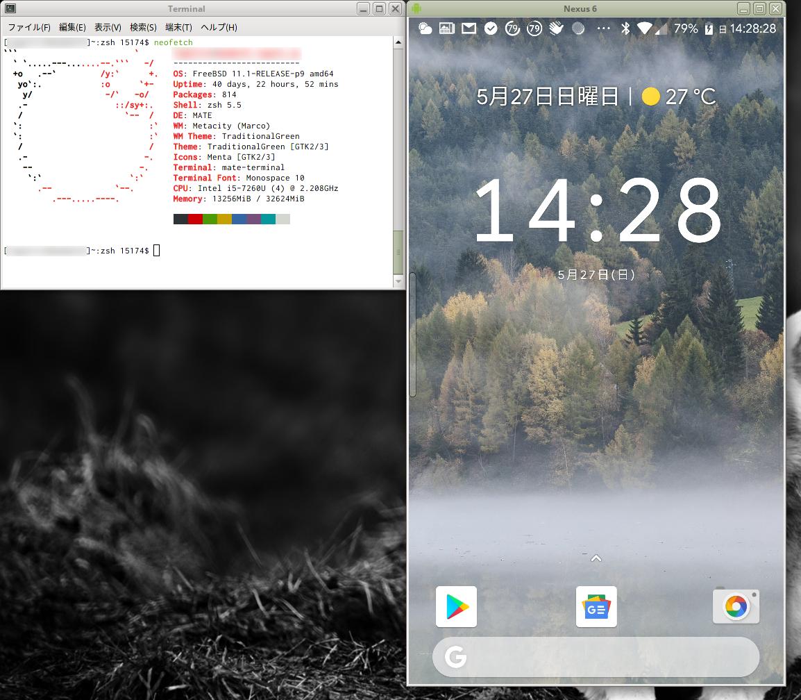 ScrcpyでFreeBSDからAndroid端末の画面を表示・操作する